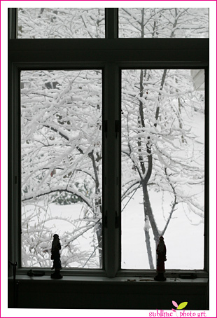 Snowwindow